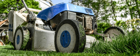Why Consistent Lawn Care Is Vital for Your Yard